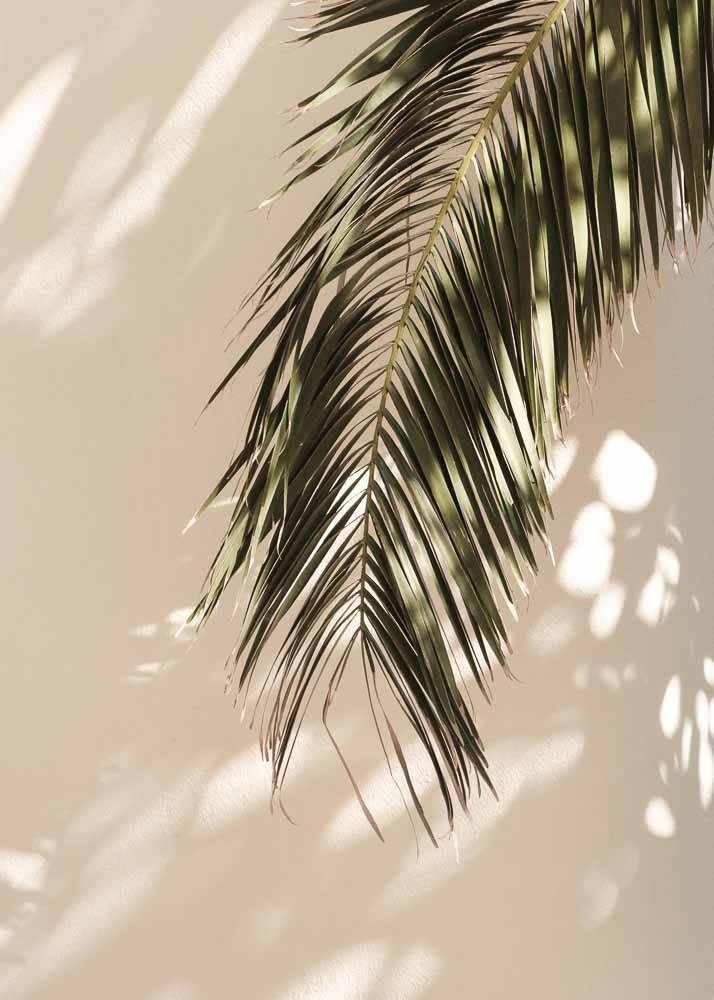 Liście palmy na beżowym tle, Plakat - 1