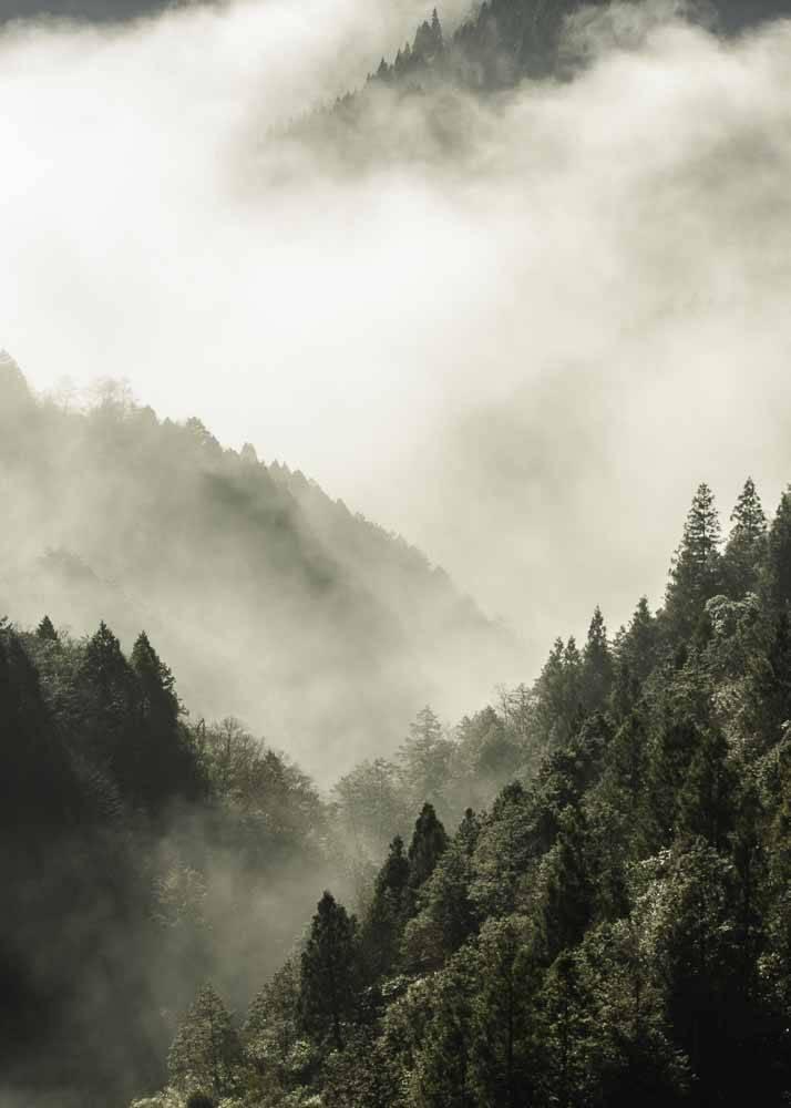 Góry we Mgle, Plakat - 1
