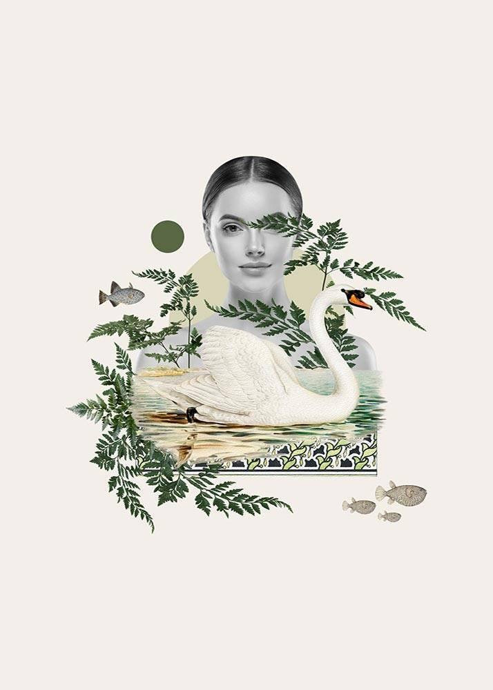 Kolaż Swan, Plakat Autorski - 1